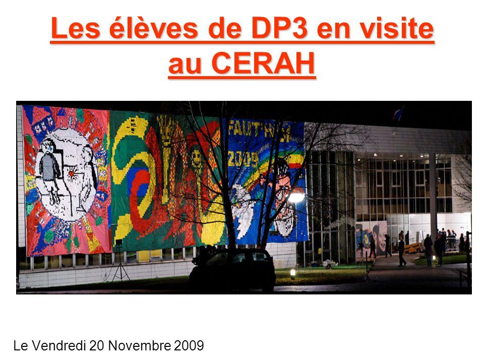 Les élèves de DP3 en visite au CERAH