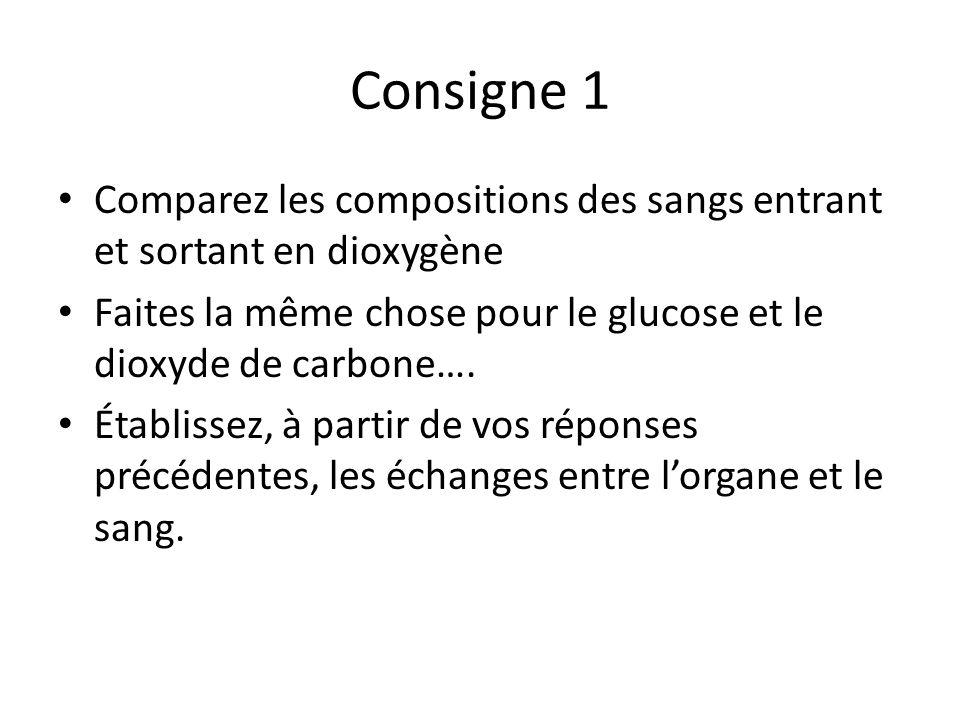 Consigne 1 Comparez les compositions des sangs entrant et sortant en dioxygène. Faites la même chose pour le glucose et le dioxyde de carbone….