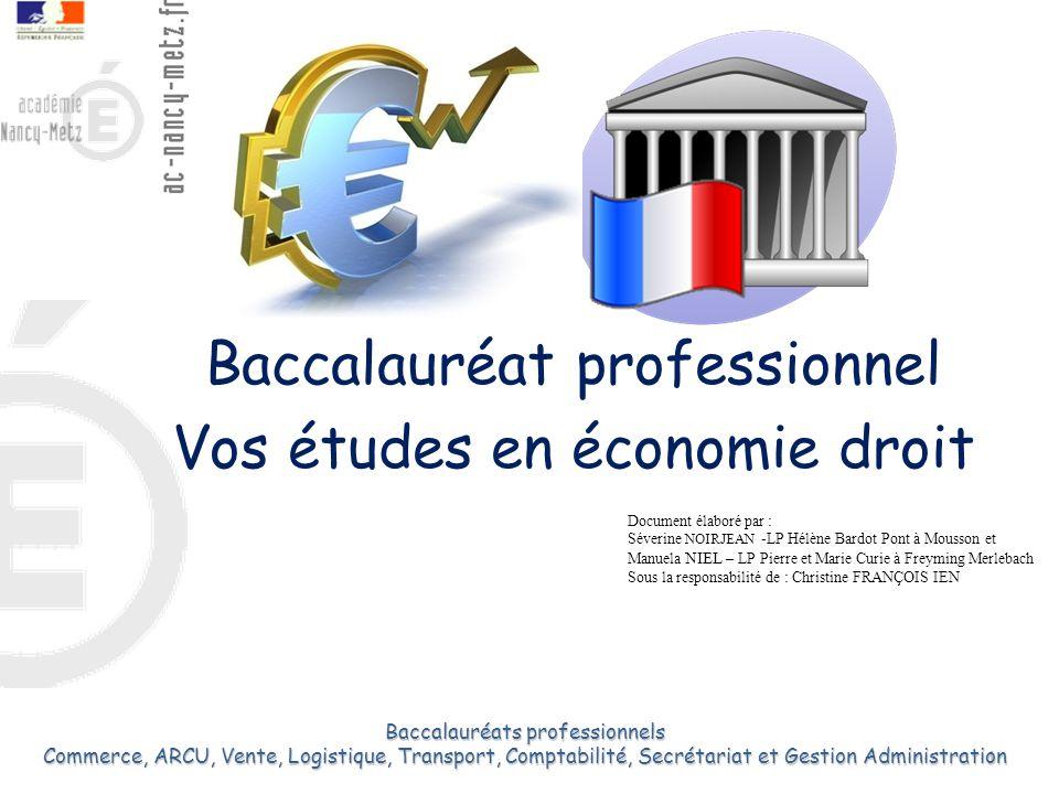 Baccalauréat professionnel Vos études en économie droit