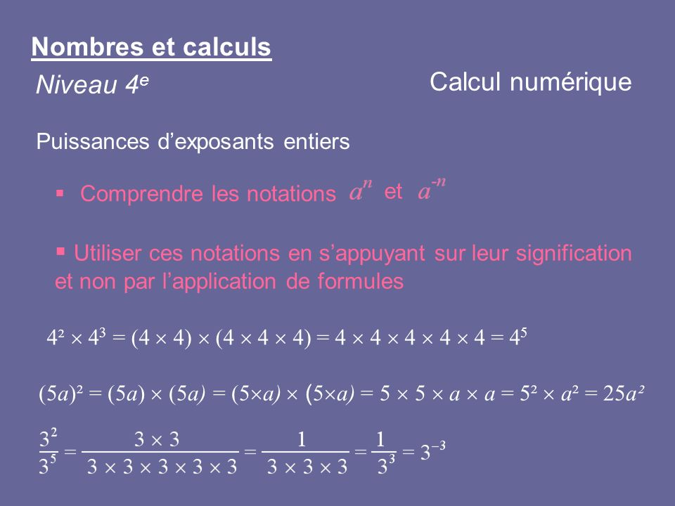 Nombres et calculs Calcul numérique Niveau 4e