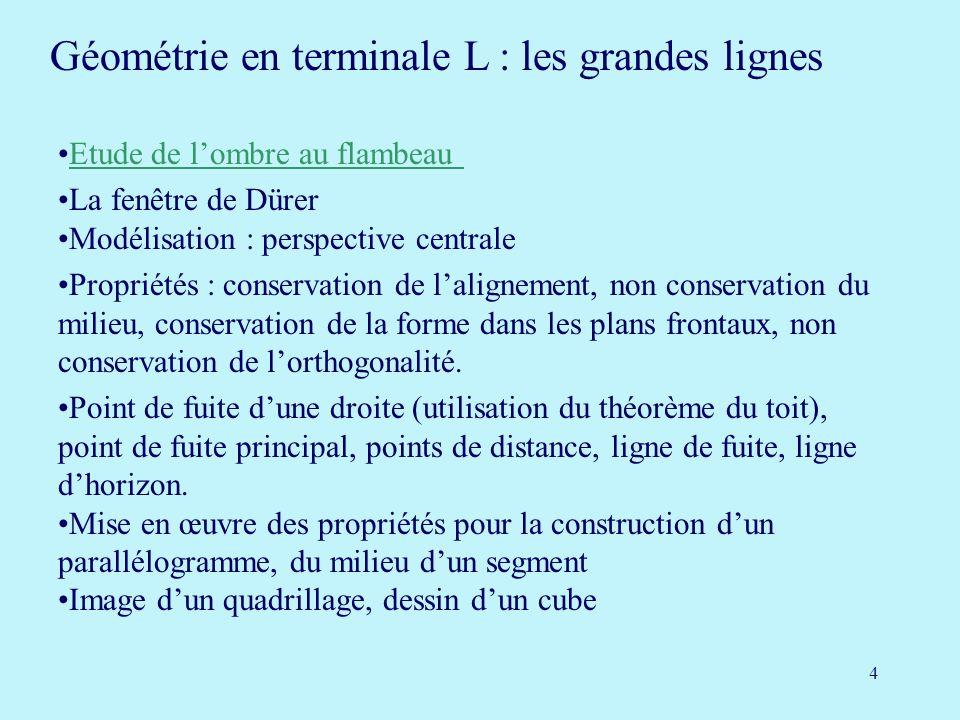 Géométrie en terminale L : les grandes lignes