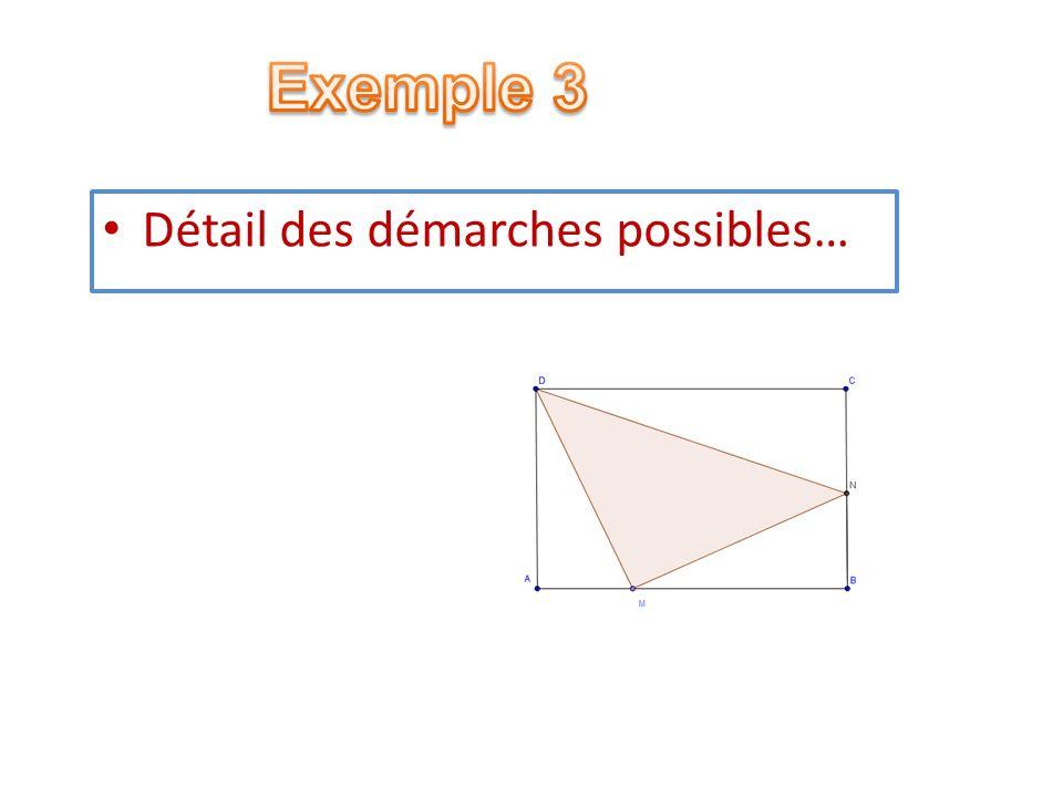 Exemple 3 Détail des démarches possibles…