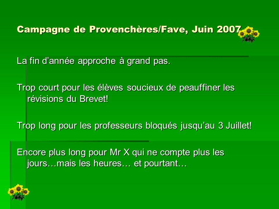 Campagne de Provenchères/Fave, Juin 2007