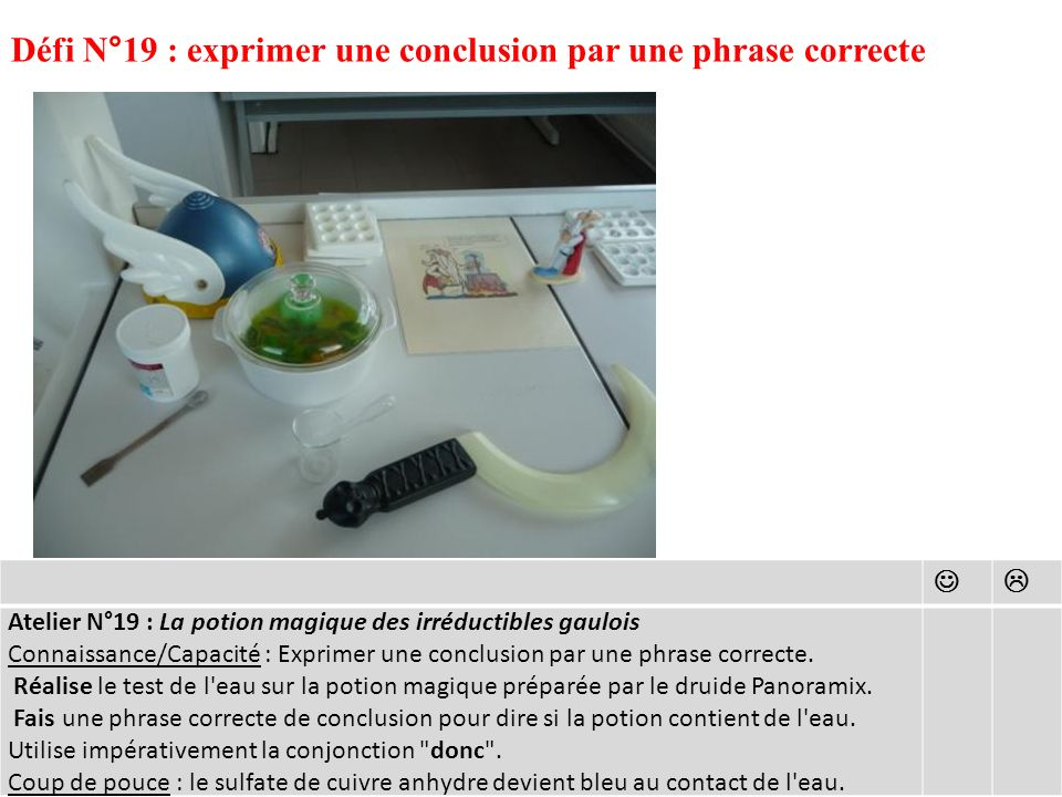 Défi N°19 : exprimer une conclusion par une phrase correcte