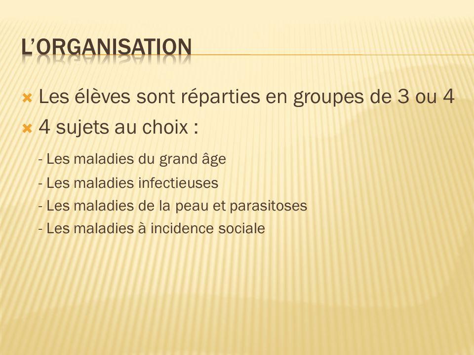 L'organisation Les élèves sont réparties en groupes de 3 ou 4