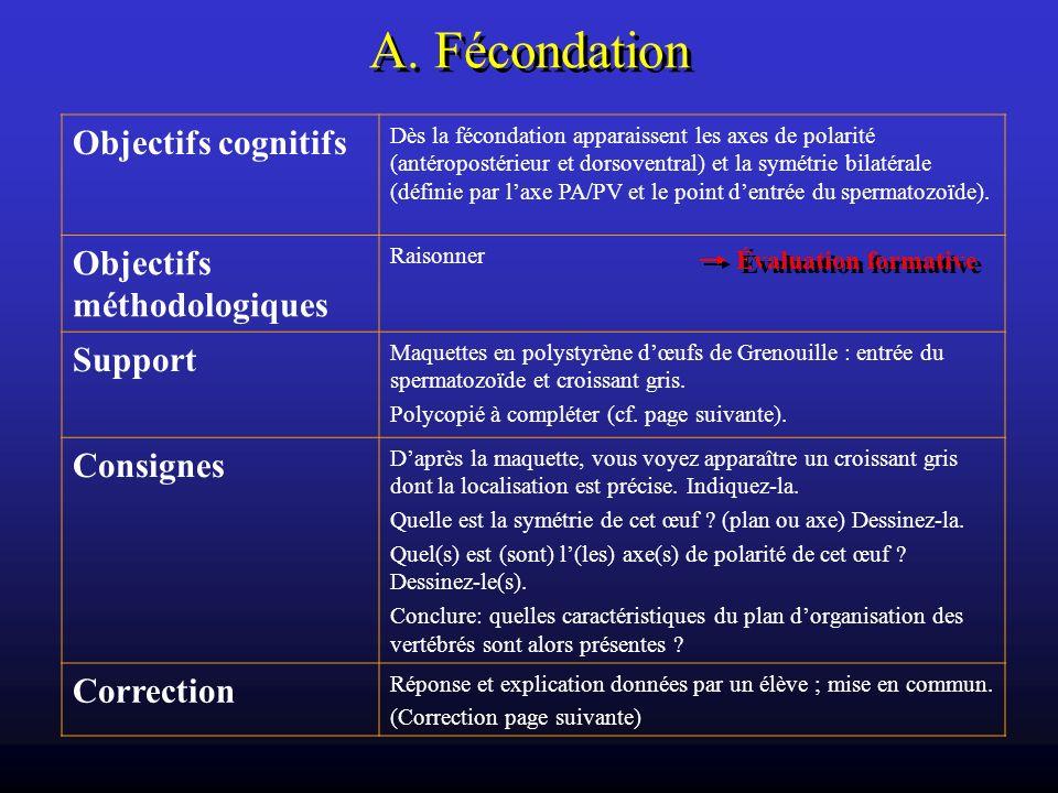 A. Fécondation Objectifs cognitifs Objectifs méthodologiques Support