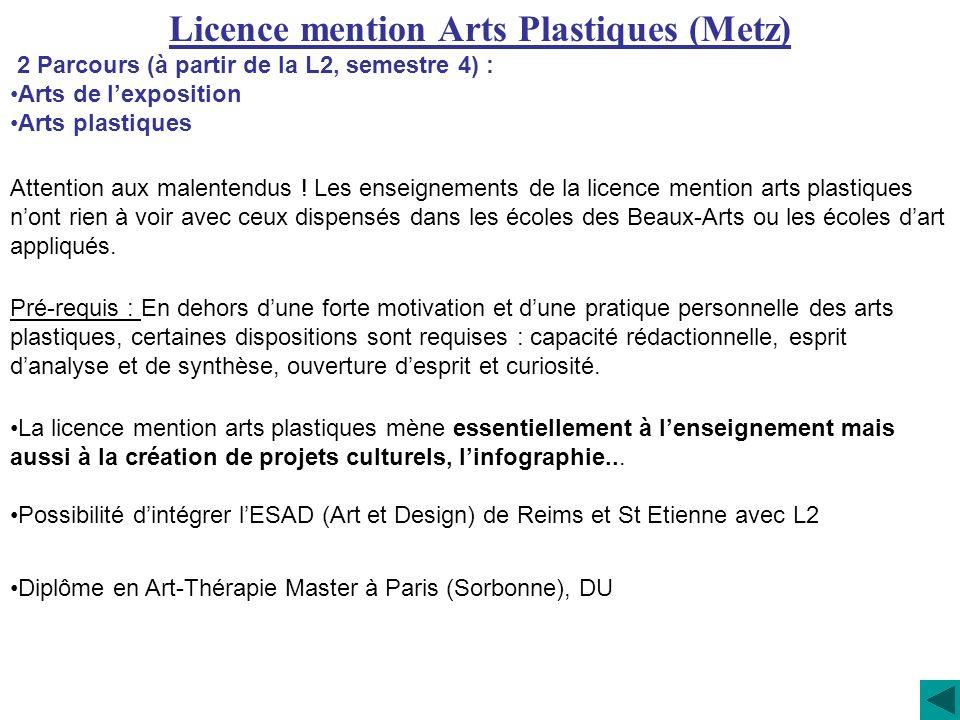 Licence mention Arts Plastiques (Metz)