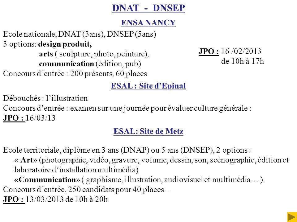 DNAT - DNSEP ENSA NANCY Ecole nationale, DNAT (3ans), DNSEP (5ans)