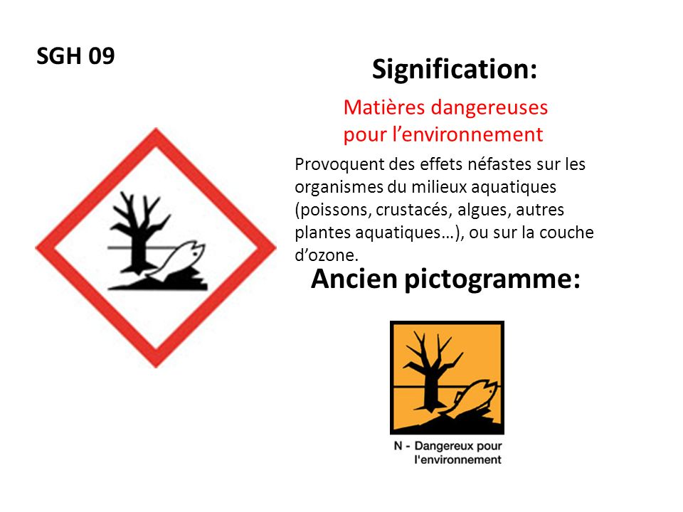 Signification: Ancien pictogramme: SGH 09