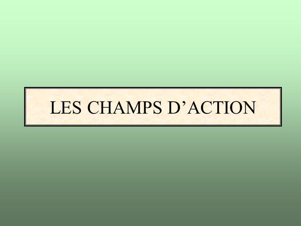 LES CHAMPS D'ACTION