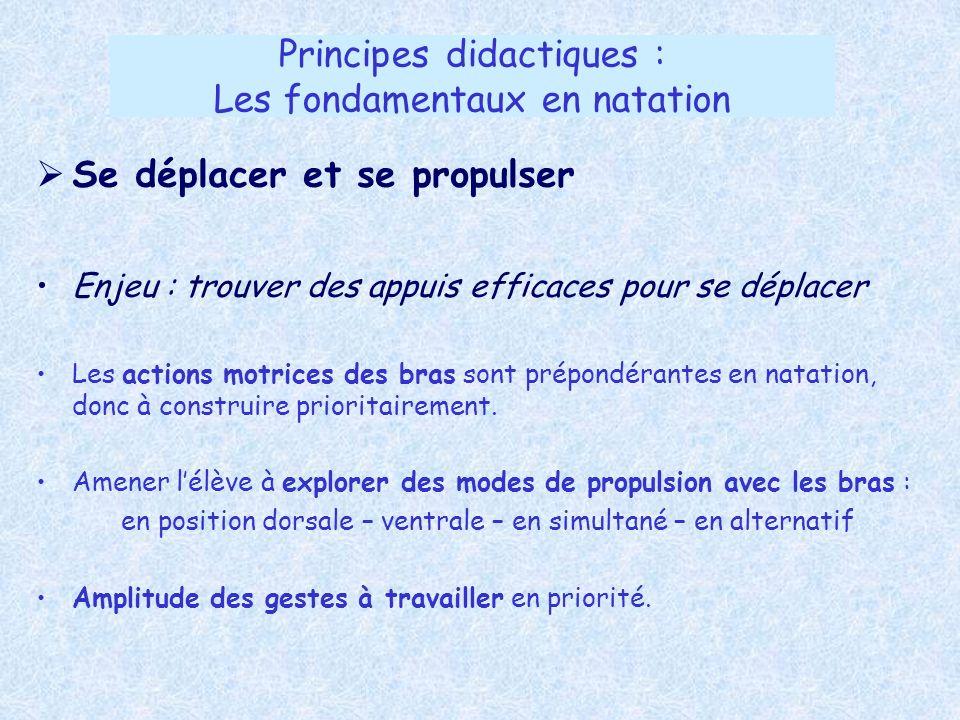 Principes didactiques : Les fondamentaux en natation