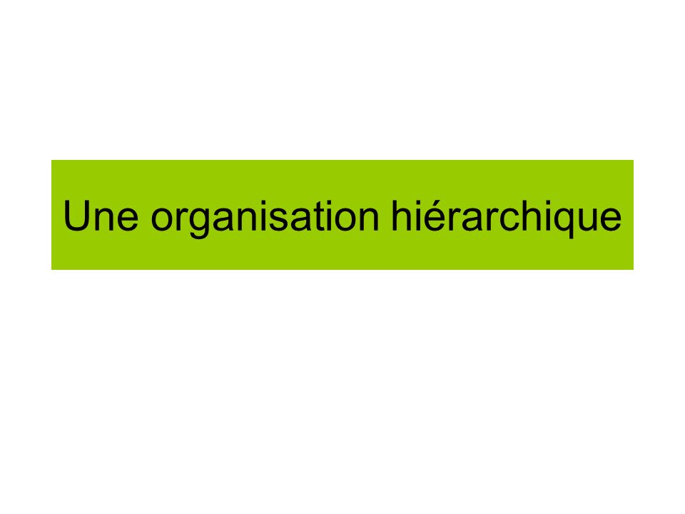 Une organisation hiérarchique