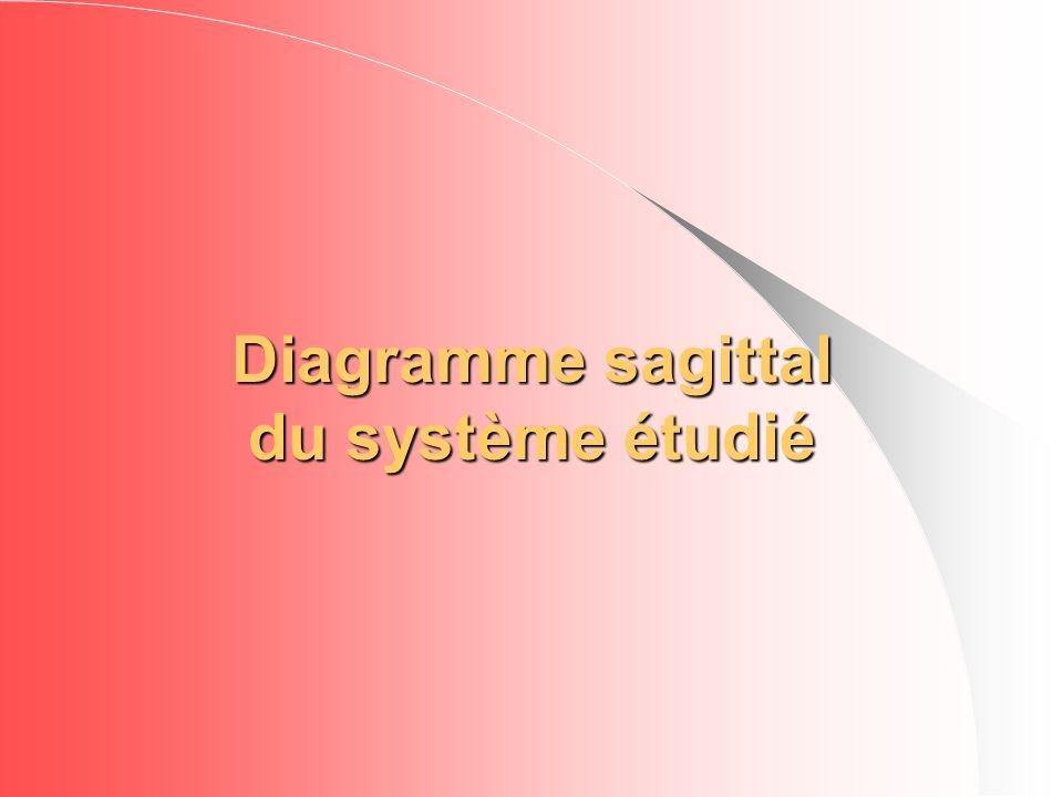 Diagramme sagittal du système étudié