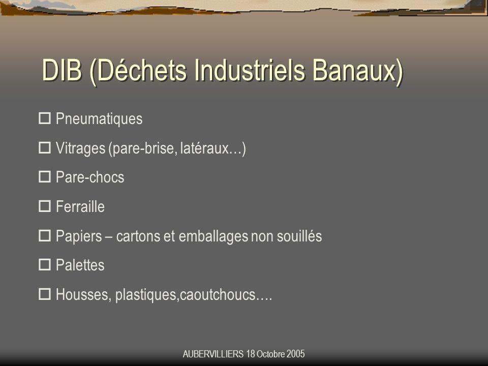 DIB (Déchets Industriels Banaux)