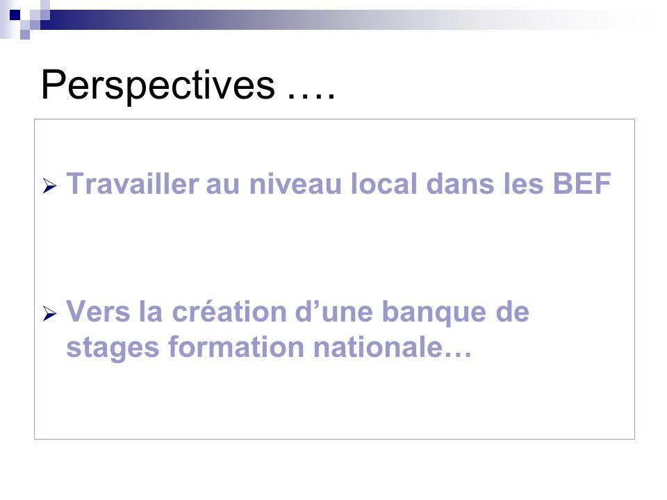 Perspectives …. Travailler au niveau local dans les BEF