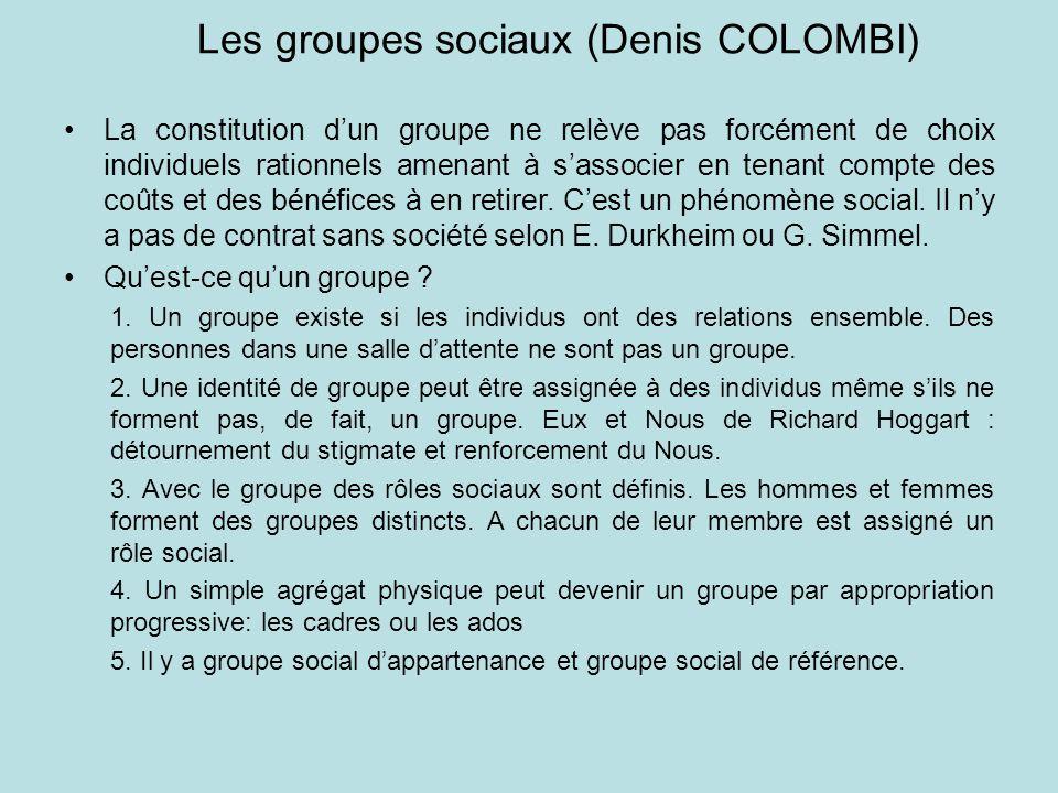 Les groupes sociaux (Denis COLOMBI)
