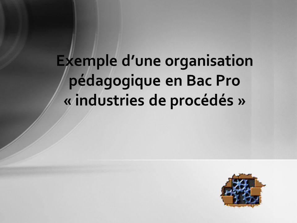 Exemple d'une organisation pédagogique en Bac Pro « industries de procédés »