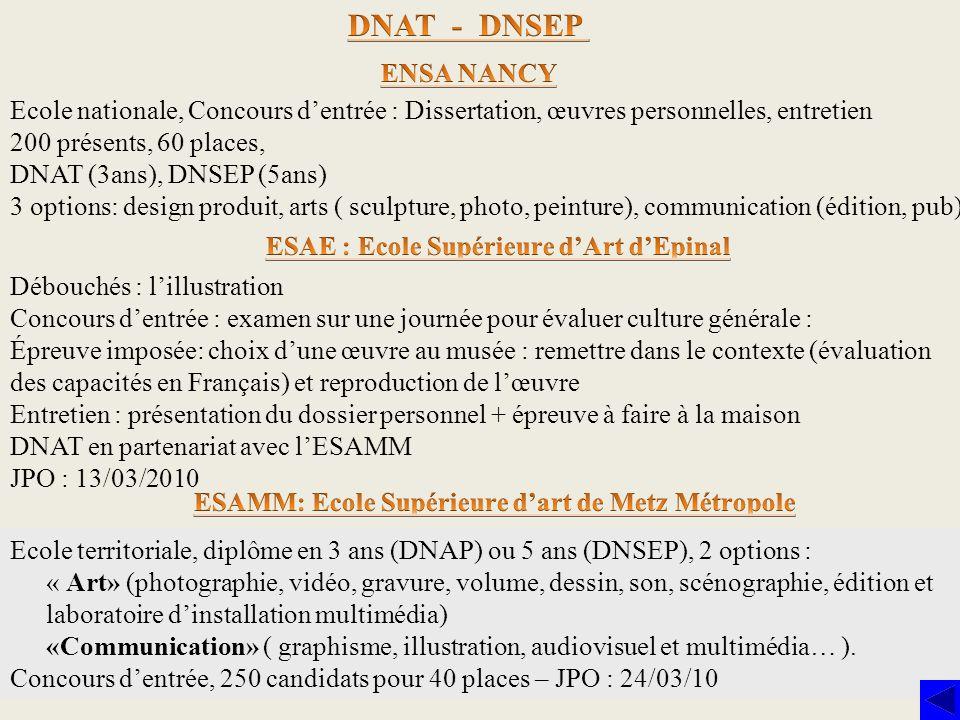 DNAT - DNSEPENSA NANCY. Ecole nationale, Concours d'entrée : Dissertation, œuvres personnelles, entretien.