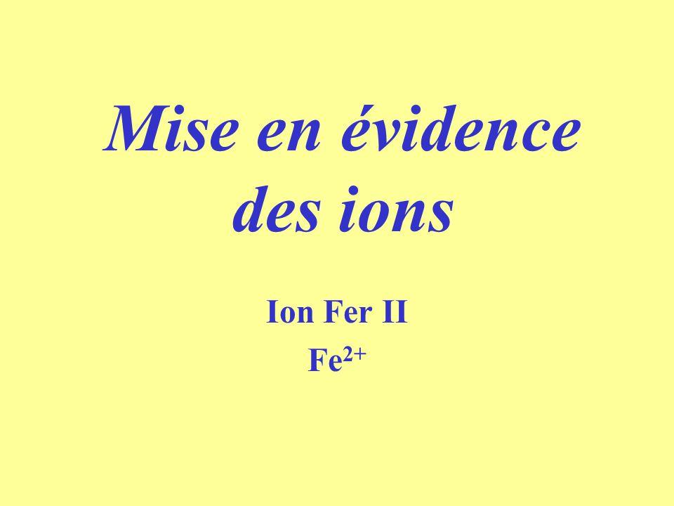 Mise en évidence des ions