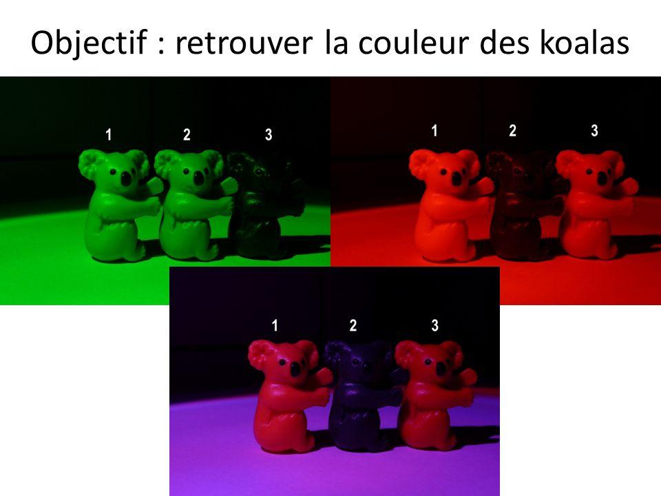 Objectif : retrouver la couleur des koalas