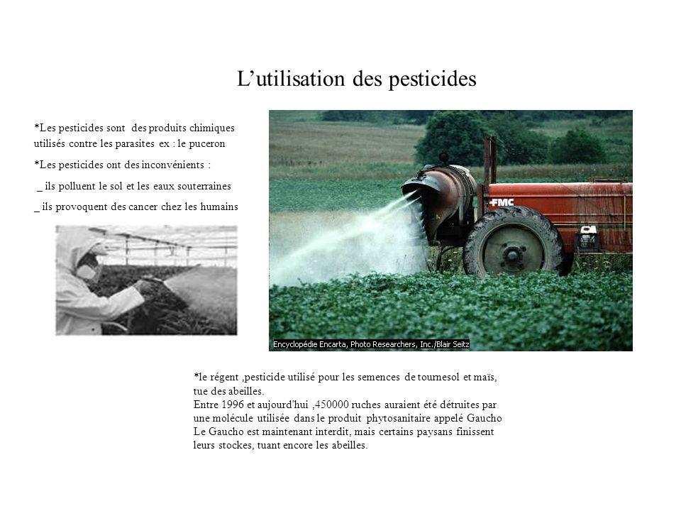 L'utilisation des pesticides