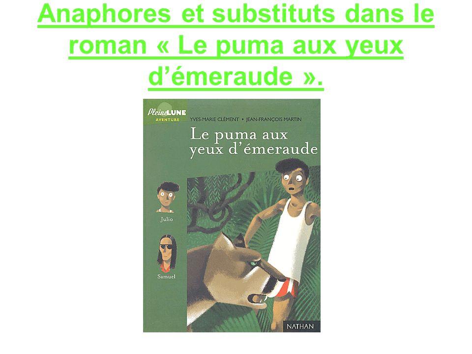 Anaphores et substituts dans le roman « Le puma aux yeux d'émeraude ».