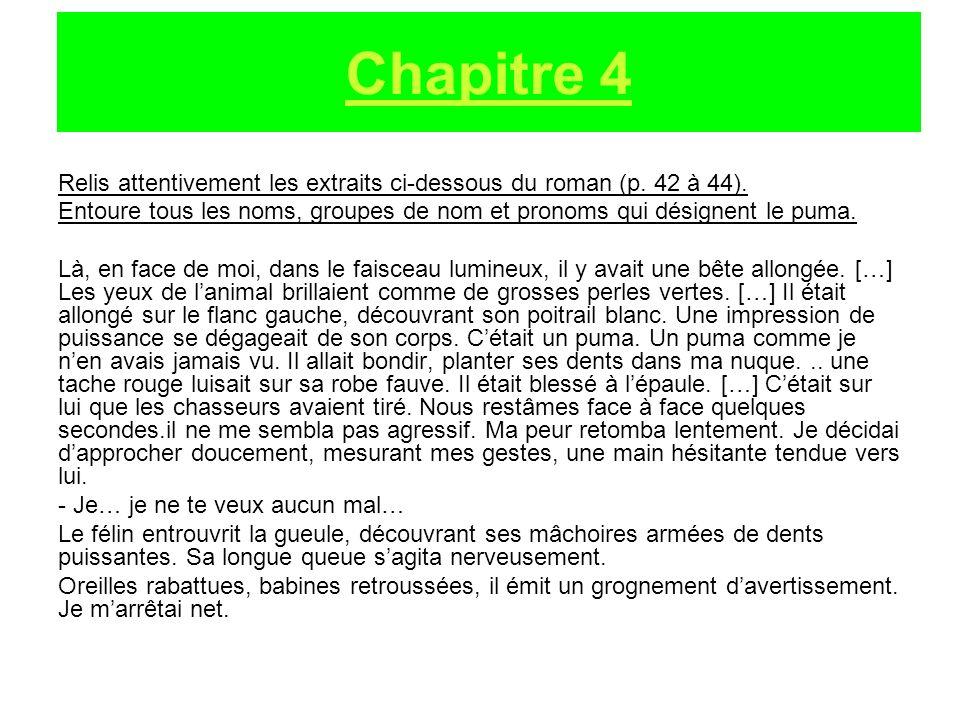 Chapitre 4 Relis attentivement les extraits ci-dessous du roman (p. 42 à 44).