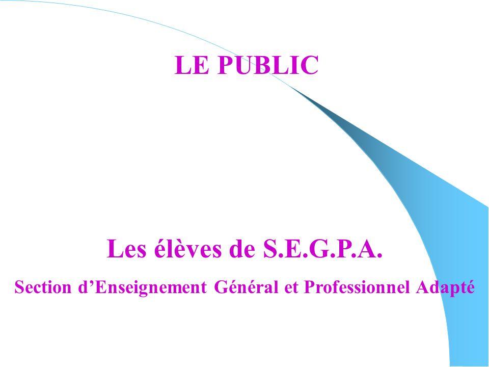 Section d'Enseignement Général et Professionnel Adapté
