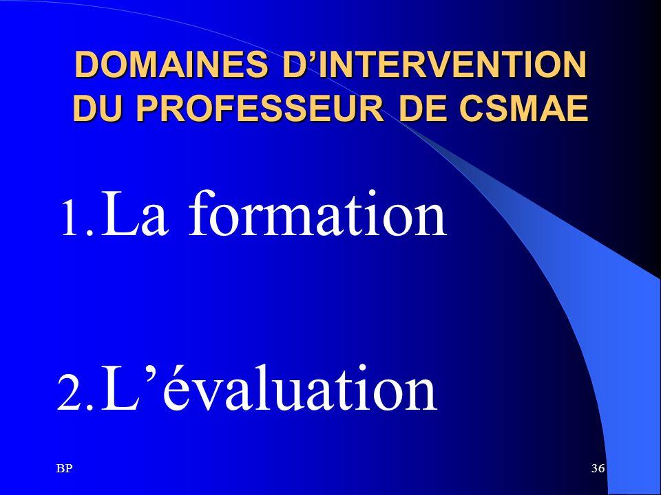 DOMAINES D'INTERVENTION DU PROFESSEUR DE CSMAE