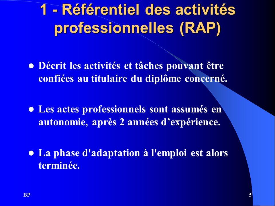 1 - Référentiel des activités professionnelles (RAP)