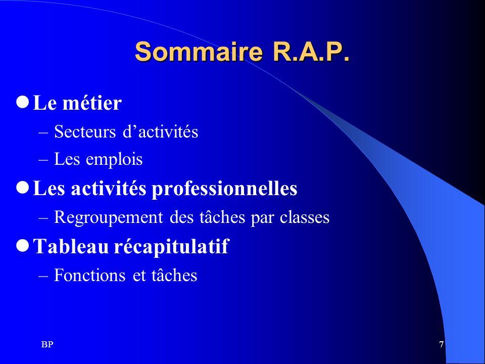 Sommaire R.A.P. Le métier Les activités professionnelles