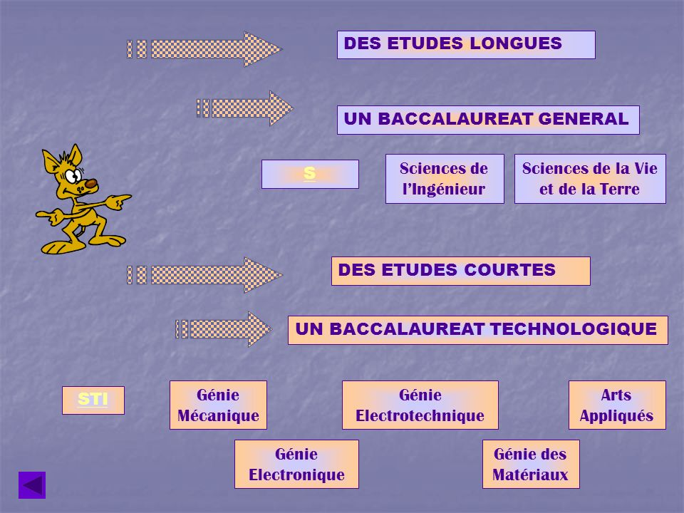 UN BACCALAUREAT GENERAL