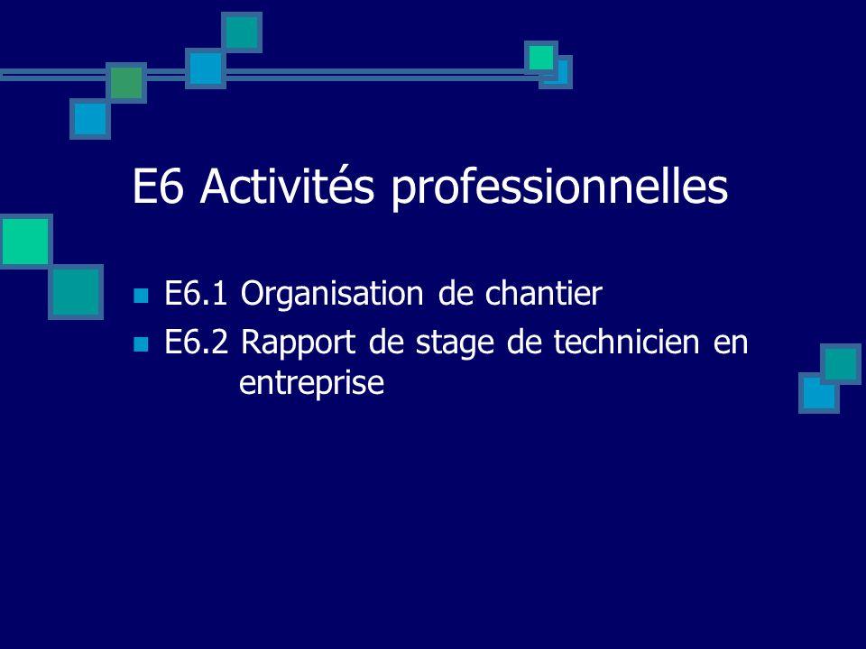 E6 Activités professionnelles