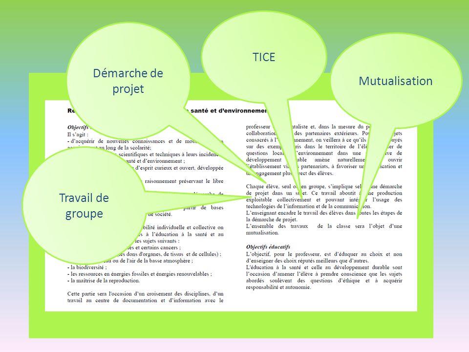 TICE Démarche de projet Mutualisation Travail de groupe