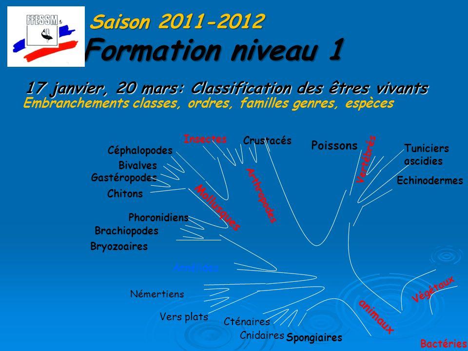 Formation niveau 1 Saison 2011-2012