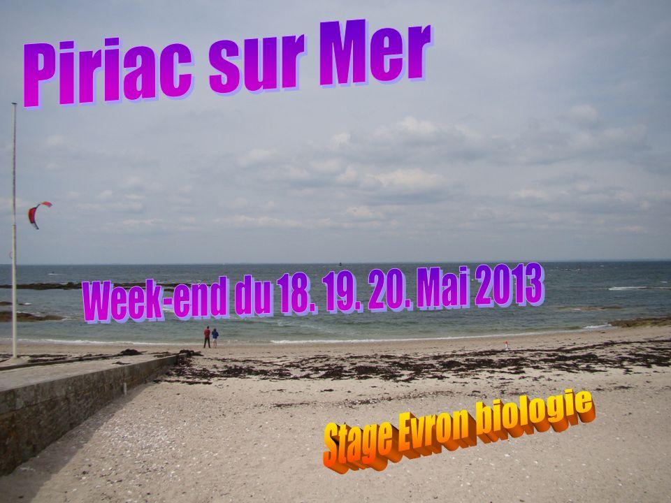 Piriac sur Mer Week-end du 18. 19. 20. Mai 2013 Stage Evron biologie
