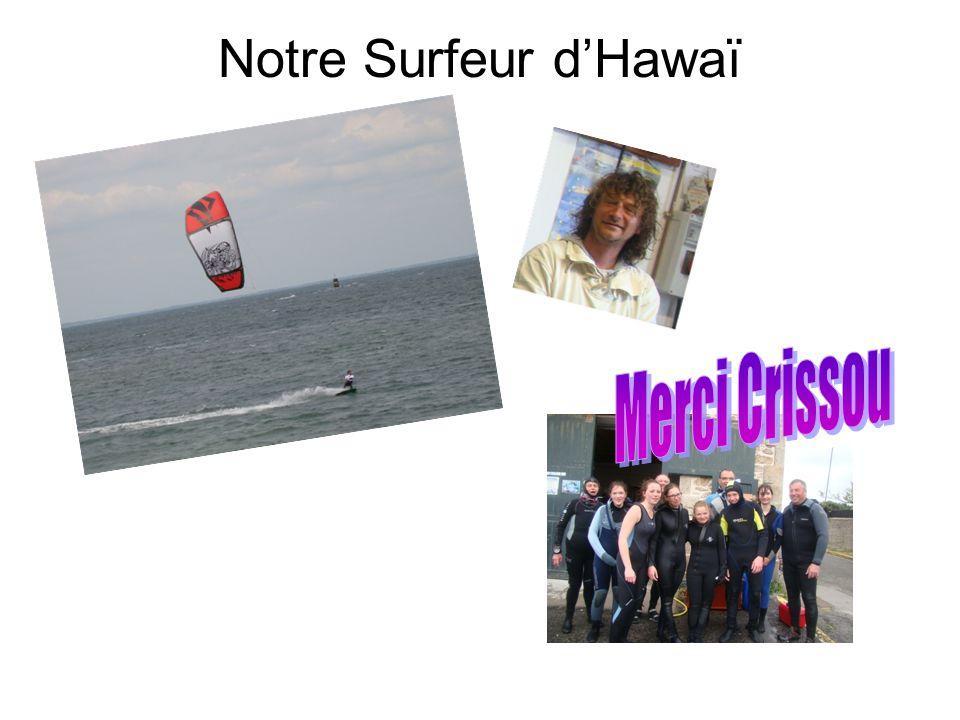 Notre Surfeur d'Hawaï Merci Crissou