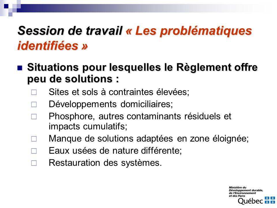 Session de travail « Les problématiques identifiées »