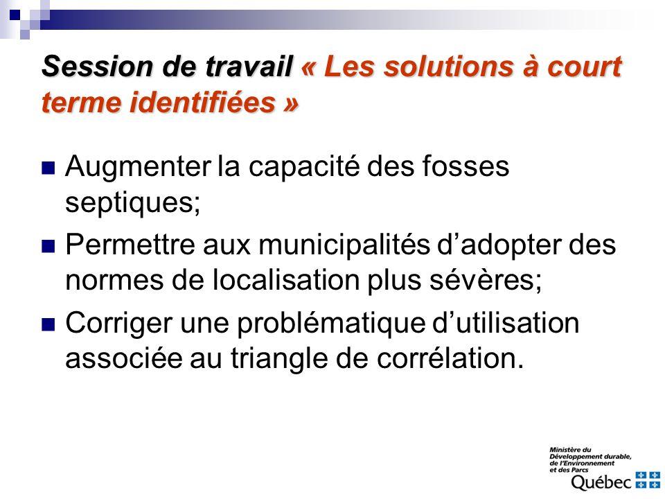 Session de travail « Les solutions à court terme identifiées »