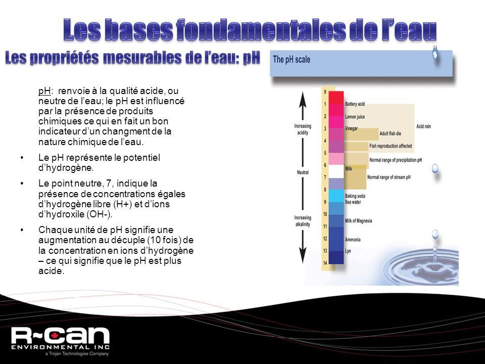 Les bases fondamentales de l'eau