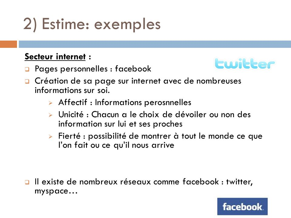 2) Estime: exemples Secteur internet : Pages personnelles : facebook