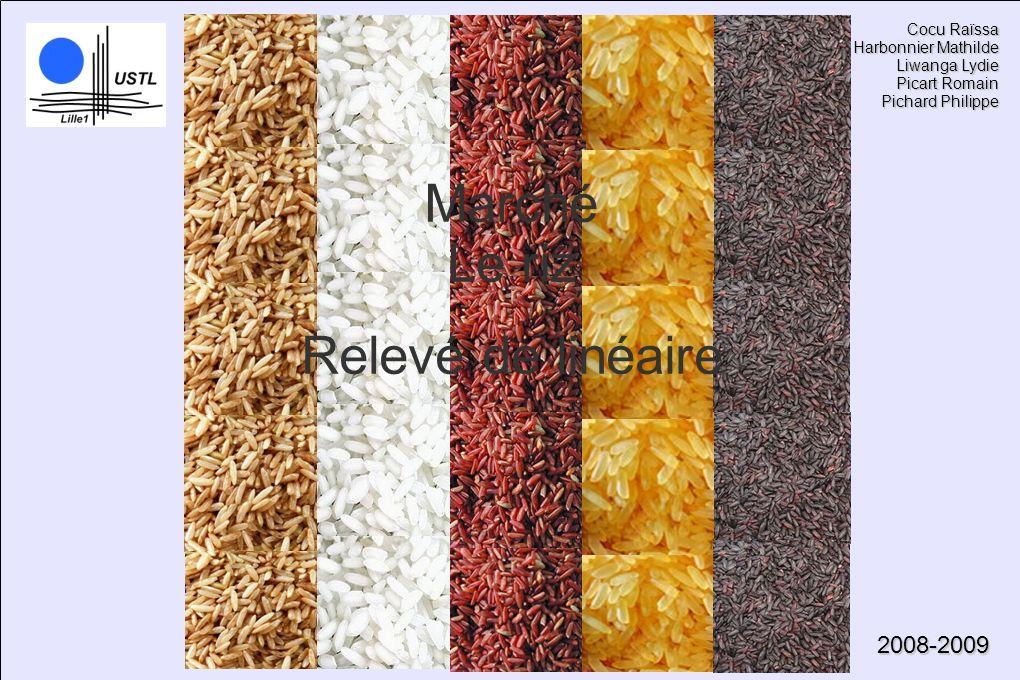 Marché Le riz Relevé de linéaire 2008-2009 Cocu Raïssa