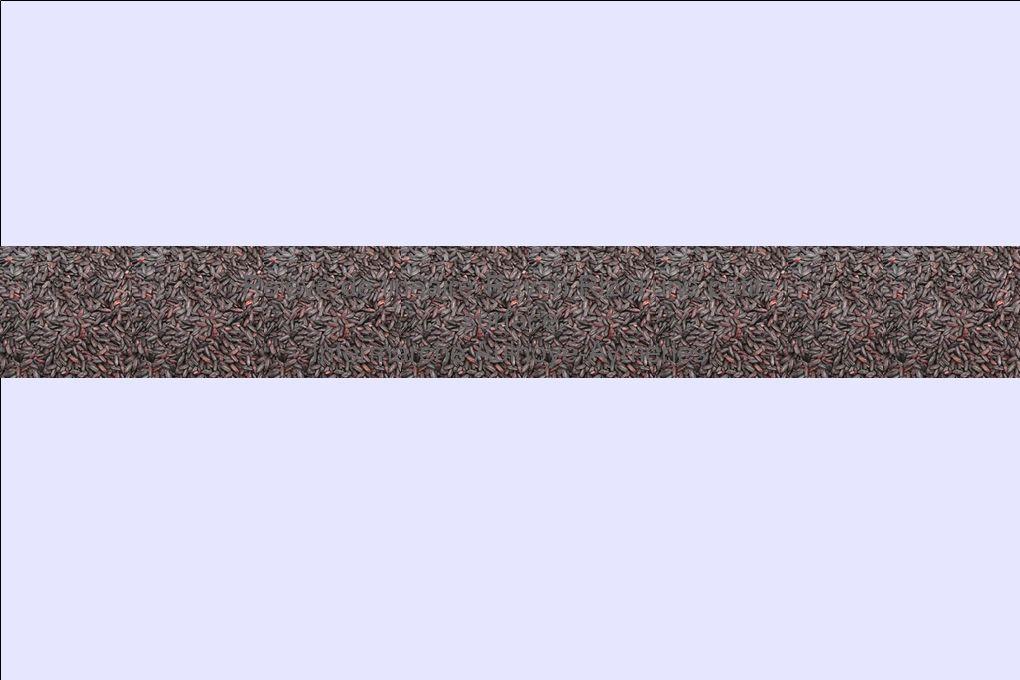 Relevé de linéaire Rayon Riz d une petite surface