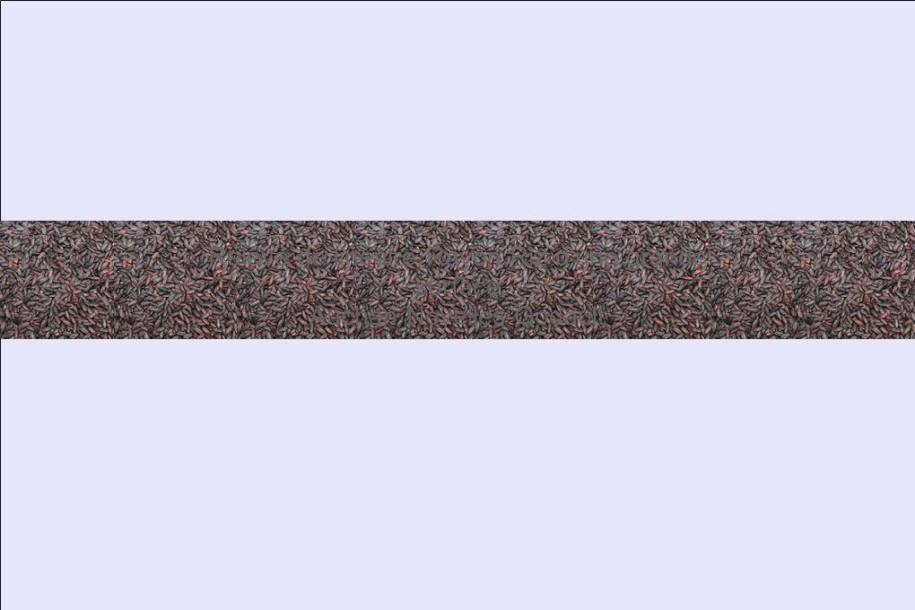 Relevé de linéaire Rayon Riz d une grande surface