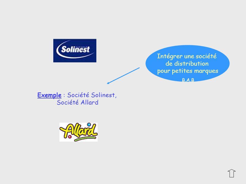 Exemple : Société Solinest,