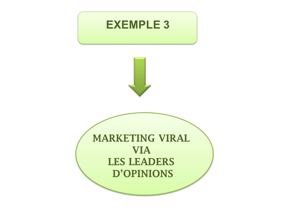 EXEMPLE 3 MARKETING VIRAL VIA LES LEADERS D'OPINIONS