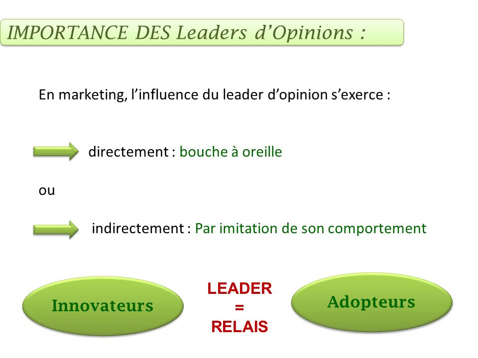 IMPORTANCE DES Leaders d'Opinions :