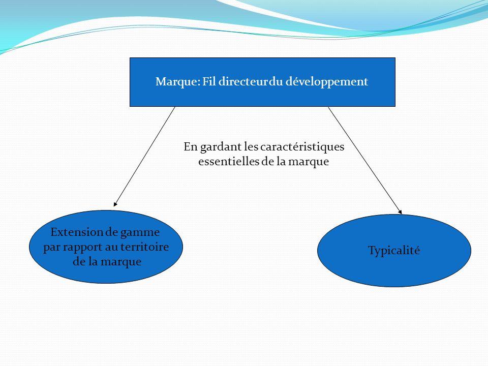 Marque: Fil directeur du développement