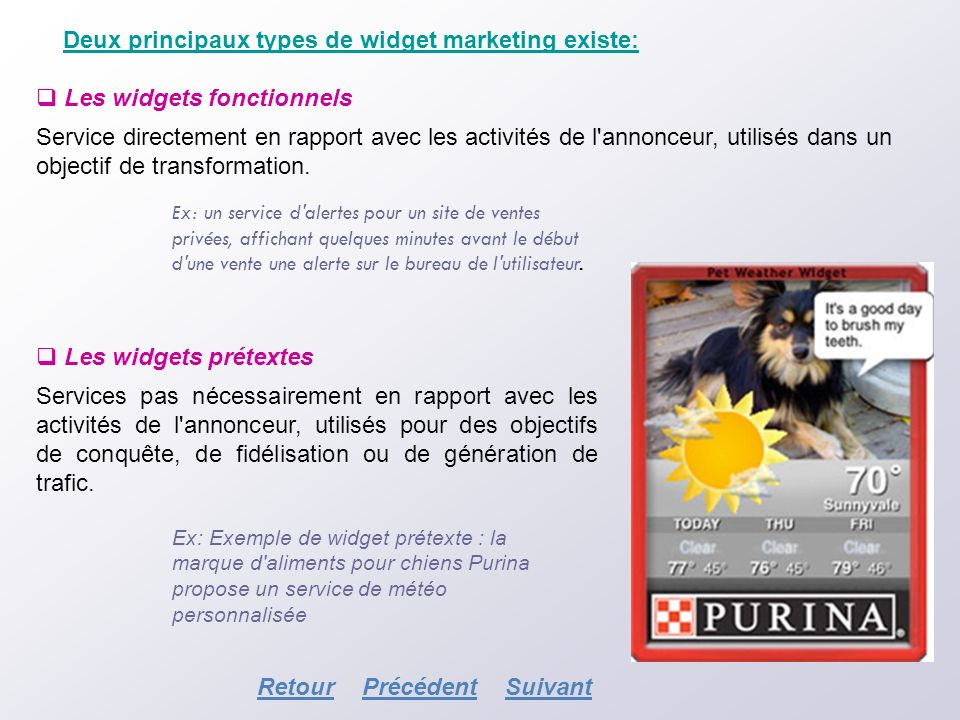 Deux principaux types de widget marketing existe: