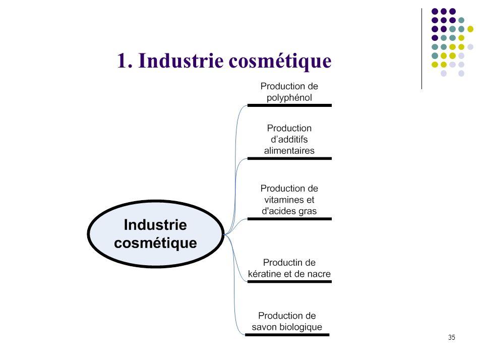 1. Industrie cosmétique